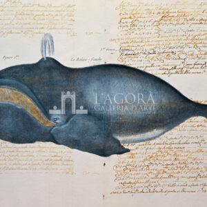 Balene e delfini su carta manoscritta